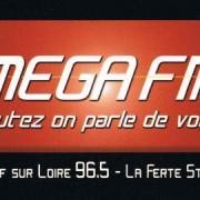 le second logo ( 2009/2012)